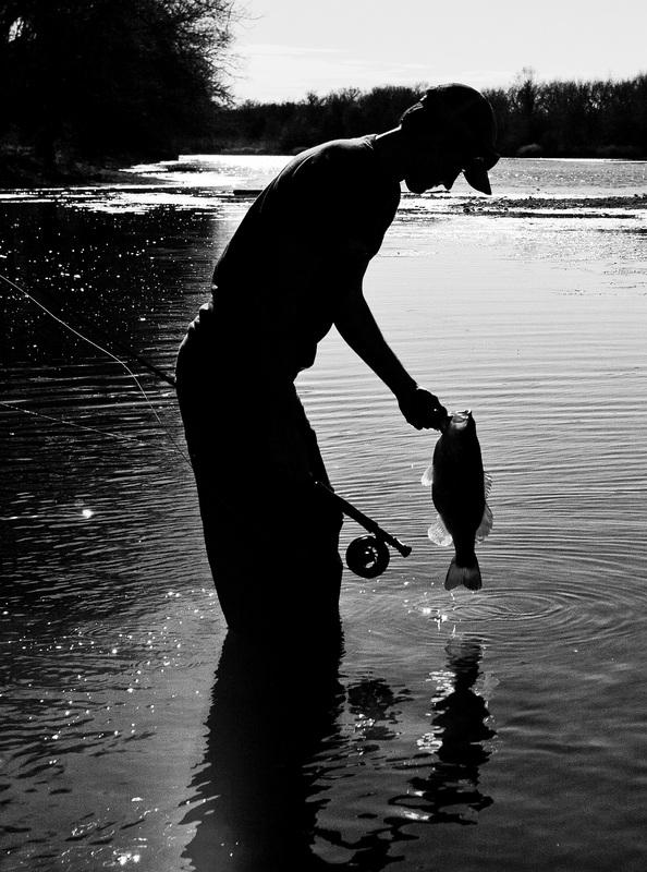 Colorado river fly fishing guide near austin tx bass guides for Fly fishing austin texas